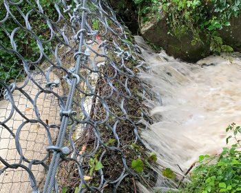 Hochwasser Thumb